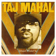 Satisfied-N-Tickled Too| Taj Mahal
