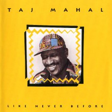Like Never Before| Taj Mahal